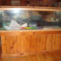 Supersized Fish Tank