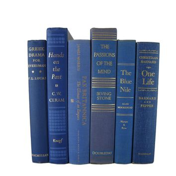 Decorative Books in Blue for Vintage Book Decor, S/6