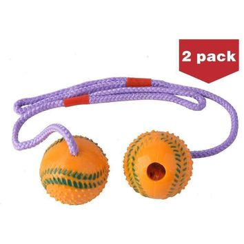 Dogs 2 PackSqueaky Balls  Rubber Dog Chew Toys with a Rope by BINGPET