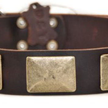 "Dean and Tyler ""BRASS PLATE"", Leather Dog Collar with Vintage-style Brass Plates - Brown - Size 24-Inch by 1-1/2-Inch, Fits Neck 22-Inch to 26-Inch"