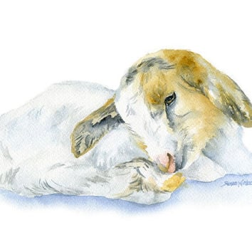 Goat Lying Down Watercolor Painting - 5 x 7 - Giclee Print - Farm Animal