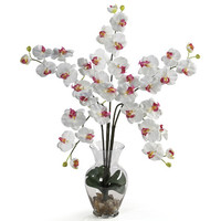 Nearly Natural Phalaenopsis Liquid Illusion Silk Flower Arrangement in White