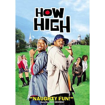How High 27x40 Movie Poster (2001)