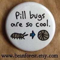 pill bugs are so cool - pinback button badge