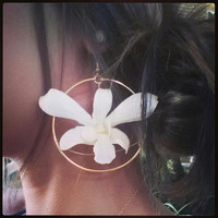Hawaiian White Orchid Flower Hoop Earring