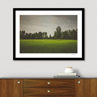 «Rice Field #1», Numbered Edition Fine Art Print by Katayoon Ahmadi - From $20 - Curioos