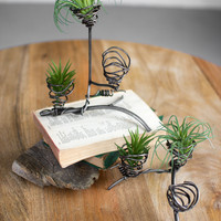 Set of 2 Wild Wire Air Plant Towers