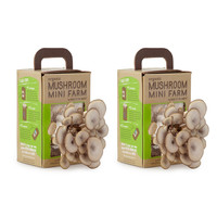 Mushroom Mini Farms - Set of 2 | growing mushrooms