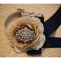 Lace Floral dog Wedding collar, Champagne wedding, floral Wedding ideas