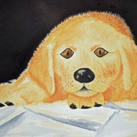 Pet Portraits-Watercolor Paintings from Your Photos-Cats, Dogs, Horses, Birds