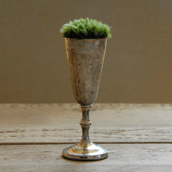Antique Sterling Silver Goblet Planter with Live Moss by Vertegris