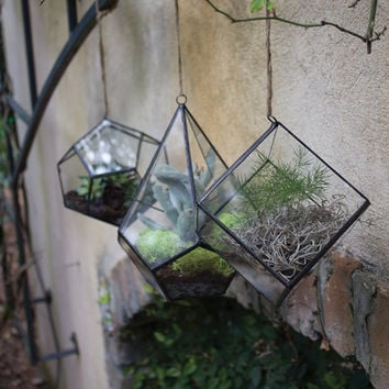 Syndicate Sales Geo-Cube Terrarium Hanging Planter