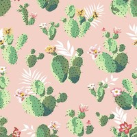Cacti on Pink
