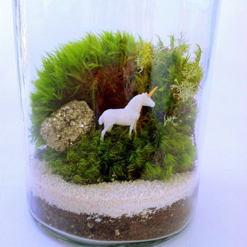 Gemstone Unicorn Terrarium Kit, Glass Terrarium, Moss Terrarium