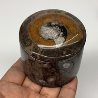 "223g, 2.2""x2.4"" Brown Fossils Ammonite Jewelry Box from Morocco, F2472"