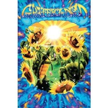 Grateful Dead Domestic Poster