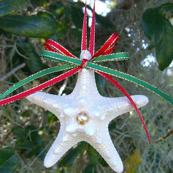 Starfish Christmas Ornament, Coastal Holiday Ornament, Beach Wedding, Unique Gift Idea, Beach Lover, Beach Home Decor, Tiffany Blue