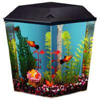 Top Fin Aqua Scene 1 Desktop Corner Aquarium Starter Kit