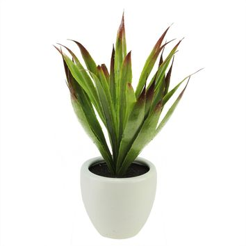 "13.5"" Artificial Green and Red Agave Succulent Plant in a Decorative White Pot"