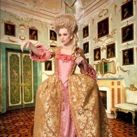 Marie Antoinette Style Gown by TimeAfterTimeDesigns on Etsy