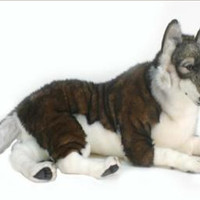 Wolf, Wolves - Luxury Lifesize, Life Size, Life-like and Realistic Large Plush, Stuffed, Resin, Fiberglass and statue Animals brought to you by Big Furry Friends