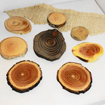 Assorted Blank Tree Branch Slices, DIY Ornament Tag Wood Round, Tree Branch Slices, Different Wood Slices, DIY Project, Rustic Wood Slices