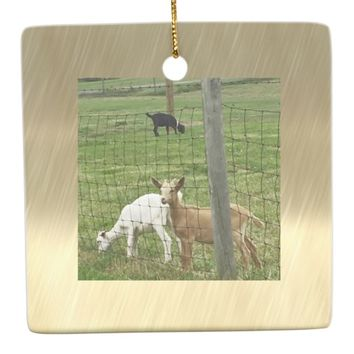 Goats Photo Ceramic Ornament