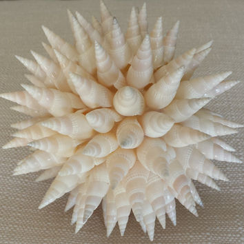 Shell Ball, Beach Décor, Home Decor, Beach Wedding Decor, Wedding Gift, Beach Wedding Bridesmaid Bouquet