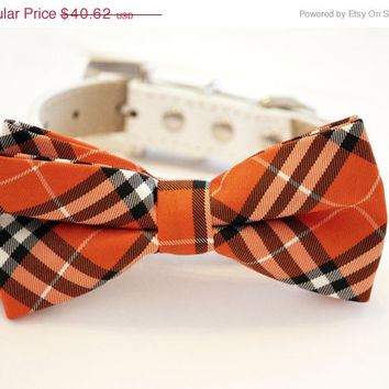 Orange Plaid Dog Bow tie, Chic Dog Bow tie, Thanksgiving accessory, Gift idea, Unique, Dog Lovers, Fall, Black and Orange