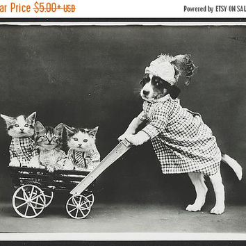 Winter Sale Dog in costume, pushing kittens in wagon cart, late 1800's Photo Print