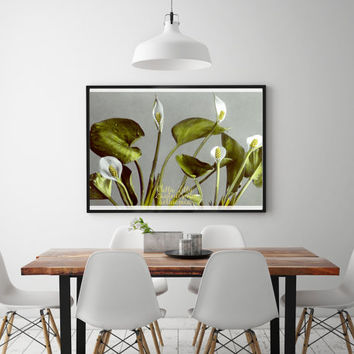 Large print, instant download, printable art, floral home decor, vintage photo, calla lily