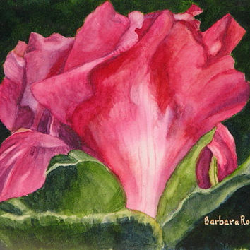 Red Flower Painting Peony Flower Art Print Peony Painting Flower Home Decor Gift Flower Watercolor Art, Red Floral Print, Barbara Rosenzweig