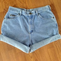 Vintage High Waisted Denim Shorts 29-31""