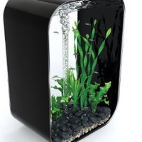biOrb LIFE 60 Aquarium with Intelligent LED Light - 16 Gallon, Black