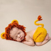 2017 Fashion New Baby Clothes of Wool Hand-woven Baby photography Costumes Animal Lion Newborn Rompers Free Shipping