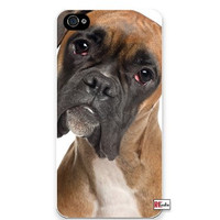 Adorable Sad Boxer Dog iPhone 4 Quality Hard Snap On Case for iPhone 4 4S 4G - AT&T Sprint Verizon - White Case Cover