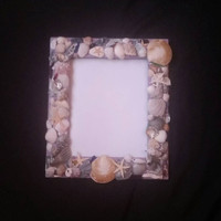 Little Treasures Lilac Picture Frame, Sea Shells, Sea Glass