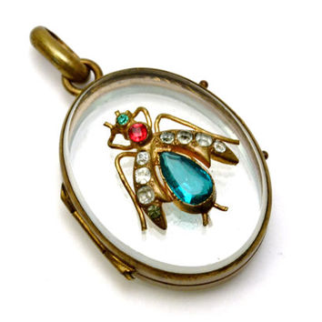 Antique Victorian oval brass frame glass front rhinestone insect locket pendant