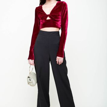 Nightlife Velvet Crop Top