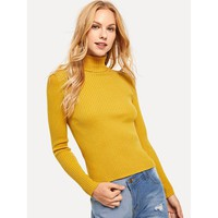 Solid Ribbed Fitted Jumper
