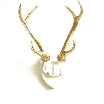Faux Antlers Plaque Wall Hanging Rustic Modern Wall Mount Wall Decor in white with gold antlers