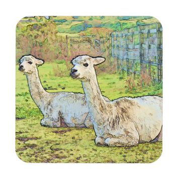 White Alpacas on Farm Coasters