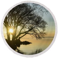 Golden Tranquility - Lacy Tree Silhouettes On The Lake Shore Round Beach Towel for Sale by Georgia Mizuleva