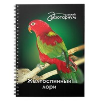 The chattering lory (Lorius garrulus) Notebook