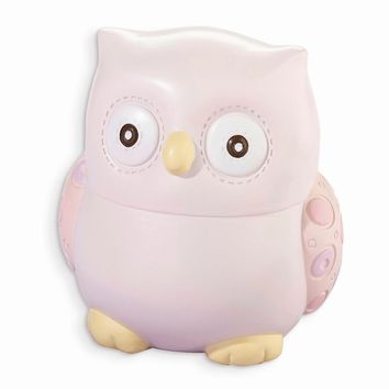 Pink/Blue Owl Coin Bank