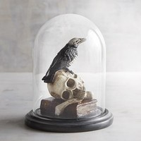 Skull & Crow in Cloche Halloween Decor