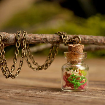 Secret garden necklace, real moss necklace, nature necklace, colorful moss necklace, antique brass necklace, glass vial necklace