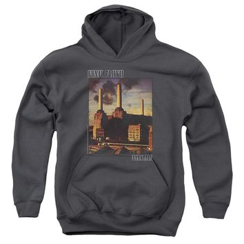 Pink Floyd - Faded Animals Youth Pull Over Hoodie