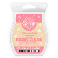 Watermelon Patch Scentsy Bar