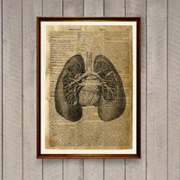 Antique decor Lungs anatomy poster Medical print WA581